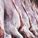 ۸۰۰ کانتینر گوشت در گمرک بندر شهید رجایی دپو شده است