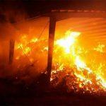 انبار علوفه مجتمع کشت و صنعت لرستان در آتش سوخت