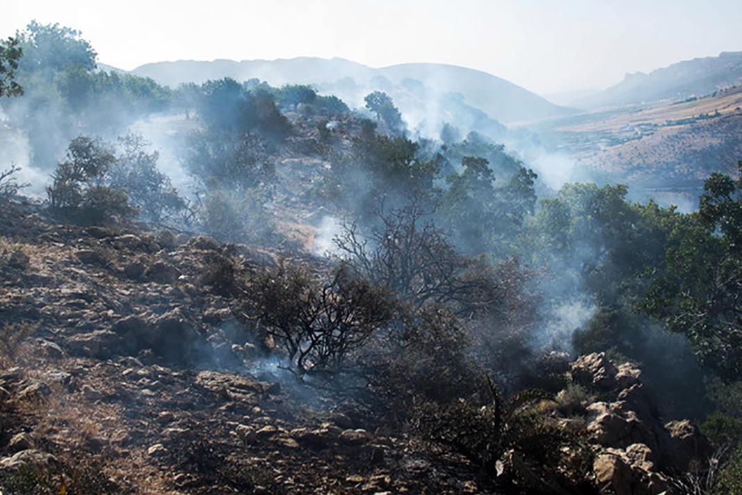 آتش سوزی مله کوه رومشکان مهار شد