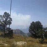 آتش سوزی در پوشش جنگلی منطقه کیبار بخش ذلقی الیگودرز