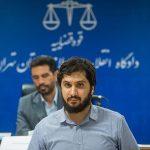 محکومیت هادی رضوی به حبس ۲۰ ساله