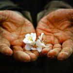 بیش از ۵۰ درصد دعاوی کارگری لرستان به صلح و سازش ختم شده است